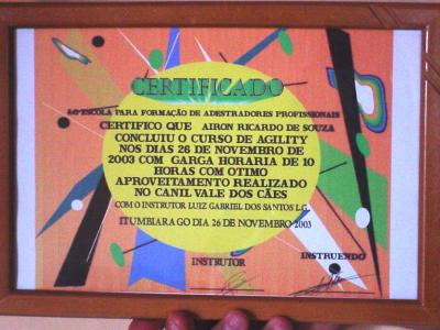 2003 b