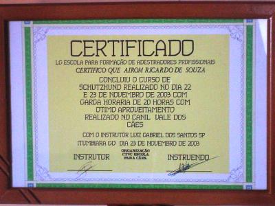 2003 d